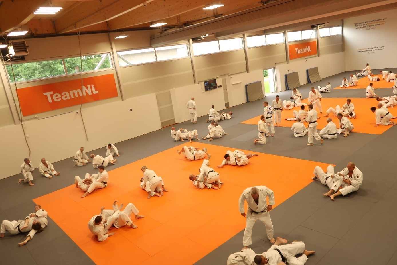 training-kata.jpg#asset:1849566